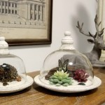 Rural Insect Kingdom Glass Decorations