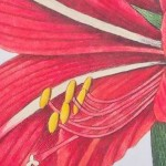 Garden-style Hand-painted Lily Wood Painting